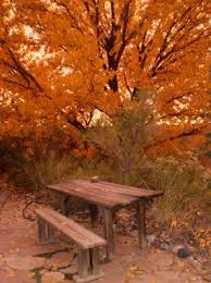 126 best b b fall images on breakfast 3 4 beds and