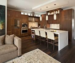espresso kitchen cabinet espresso color kitchen cabinets of kitchen decoration ideas with