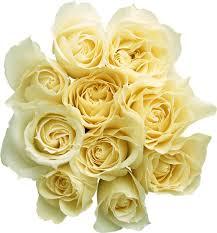flower preservation home floral preservation more