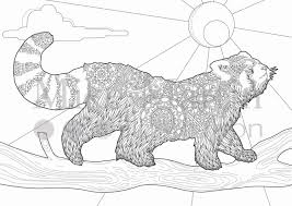 printable red panda coloring page instant download