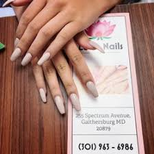 lotus nails 254 photos u0026 78 reviews nail salons 255 spectrum