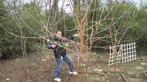 how to install christmas lights on outside trees youtube