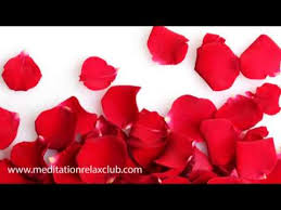 A Happy Valentine Will The by Valentine E Cards On The 14th Of February 2018 Happy Valentine E