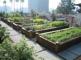 Urban Gardens Urban Gardens