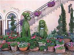 115 best epcot flower u0026 garden festival images on pinterest