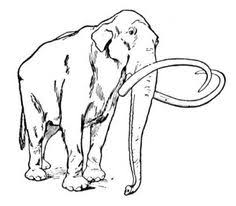 wolly mammoth extinction telegraph