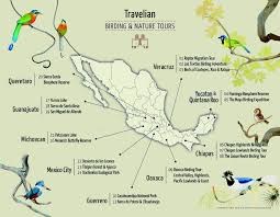 Oaxaca Mexico Map Travelian Bird Watching Journeys