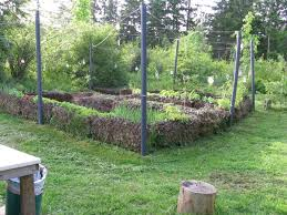 country vegetable garden pictures decorating clear
