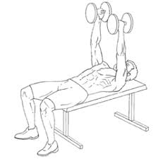 Flat Bench Db Fly Dumbbell Flyes Gymjp Com