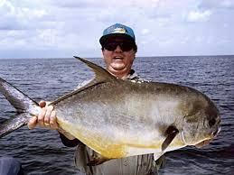 island fishing charters with capt tom chaya