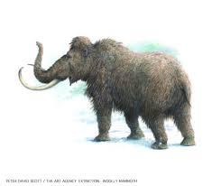 amazing pleistocene park works magazine