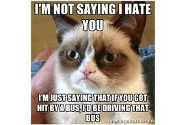 Meme Generator Grumpy Cat - what would grumpy cat short marketwatch
