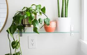 plant wall hangers indoor inspiring plant indoor plant wall decor decorative metal wall plant