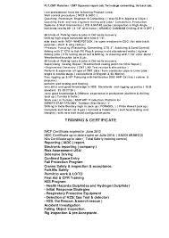 petroleum engineer resume dsv resume 5