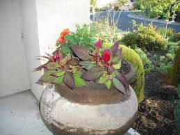 easy flower pot ideas for garden best house design