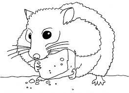 Coloriage Hamster mange de fromage dessin gratuit à imprimer