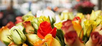 fresh cut flowers fresh cut flowers time definite services inc
