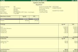 payroll pay slip report