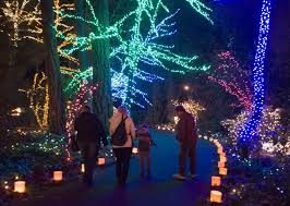 oregon zoo lights 2017 awesome idea christmas lights in portland oregon best area display