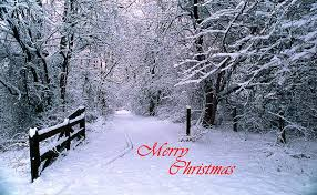 snowy christmas pictures snowy trail merry christmas photograph by skip willits