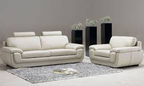 leather living room furniture with three decorative plants house