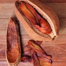 spiced mahogany fragrance