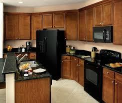 birch wood kitchen cabinets birch kitchen cabinets aristokraft cabinetry