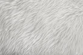 white fur texture background stock photo picture and royalty free