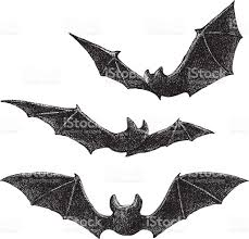 Bat Drawings For Halloween by Bats Drawing Stock Vector Art 489080658 Istock