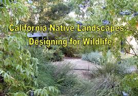 habitat gardens lawn replacement california natural landscaping