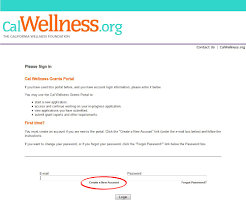 Letter Of Intent For Funding how to apply the california wellness foundation