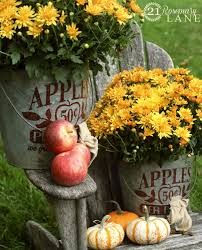 21 rosemary lane apples 50 cents a bucket two galvanized