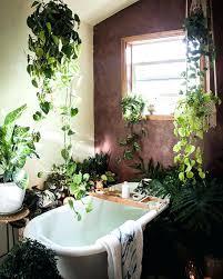 Jungle Home Decor Jungle Home Decor Ating Tropical Jungle Home Decor