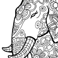 elephant coloring pages adults print free zoo animals tropical