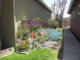 398 best california landscaping images on pinterest gardening