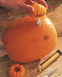mini pumpkin carving ideas pumpkin owls u0026 video martha stewart