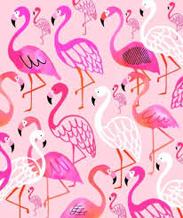 wallpaper with pink flamingos pink flamingo wallpaper para manualidas flamingos la border