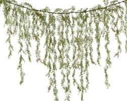green garland etsy