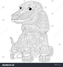 stylized dachshund german badger dog isolated stock vector
