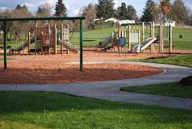 sorsenson park play structure 2 parks foundation of clark county