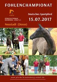 Pferdezentrum Bad Saarow Calaméo Fohlenchampionat 2017