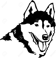 husky stock photos u0026 pictures royalty free husky images and stock