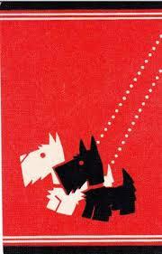 861 best scottish terrier images on scottie dogs