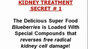 kidney failure natural solution remedy kidney function
