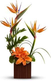tropical flower arrangements flowers tropical flower arrangements