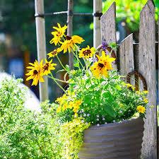 container garden design ideas design ideas