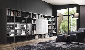 Contemporary Living Room Wall Units And Libraries Ideas - Modern wall unit designs for living room