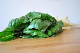 comment cuisiner des feuilles de blettes recette blette comment cuisiner des blettes bio montpellier