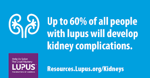 Sle Non Profit Financial Statements by Learn How Our Research On Lupus Kidney Disease Helps Patients Now