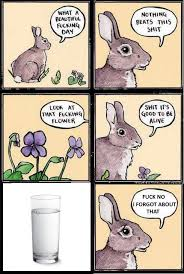 Philosophical Memes - rigid philosophical memes home facebook
